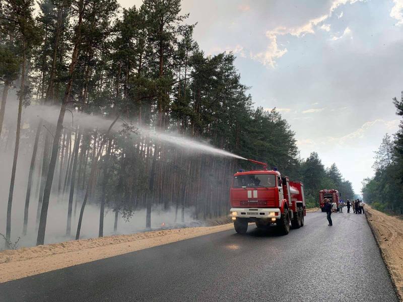 На Луганщине снова горит лес: обстреляли боевики