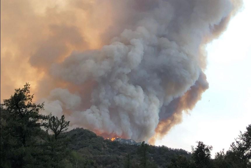 Более десятка жертв и  минимум 500 тысяч эвакуированных. Масштабные лесн...