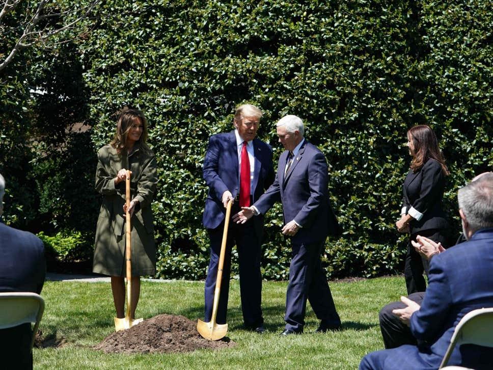 В День земли чета Трампов посадила дерево на лужайке у Белого дома