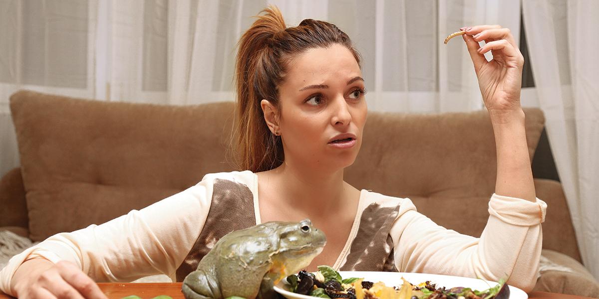 Не только в голове. Зачем украинцы едят тараканов