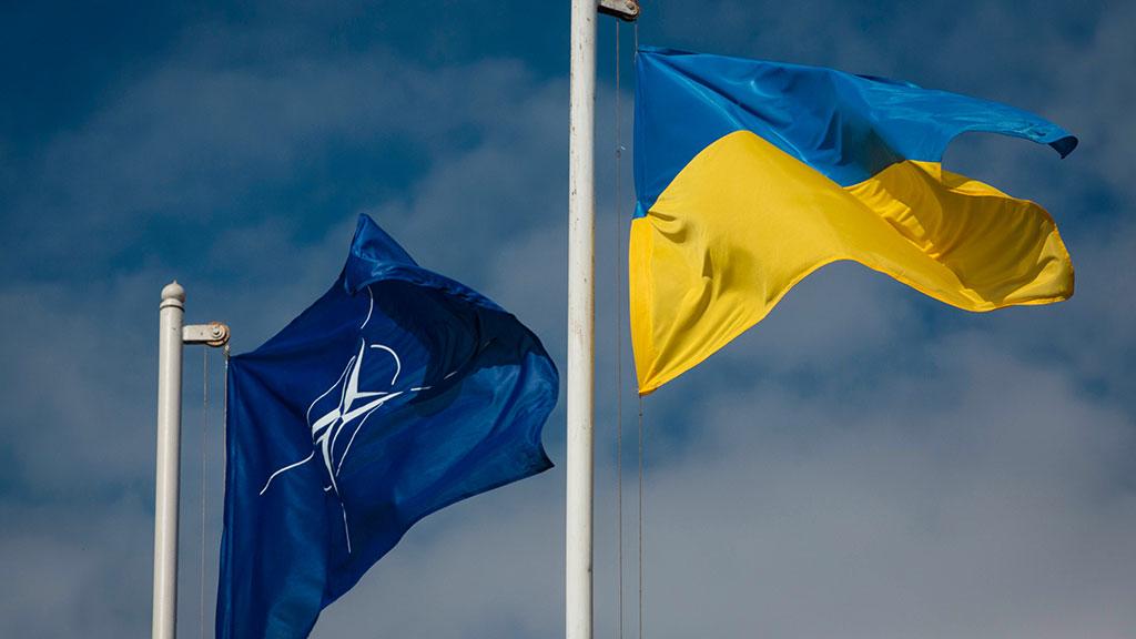 """Кабмин одобрил годовую нацпрограмму """"Украина - НАТО"""""""