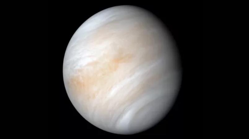 Жизнь на Венере может оказаться земной, – ученые