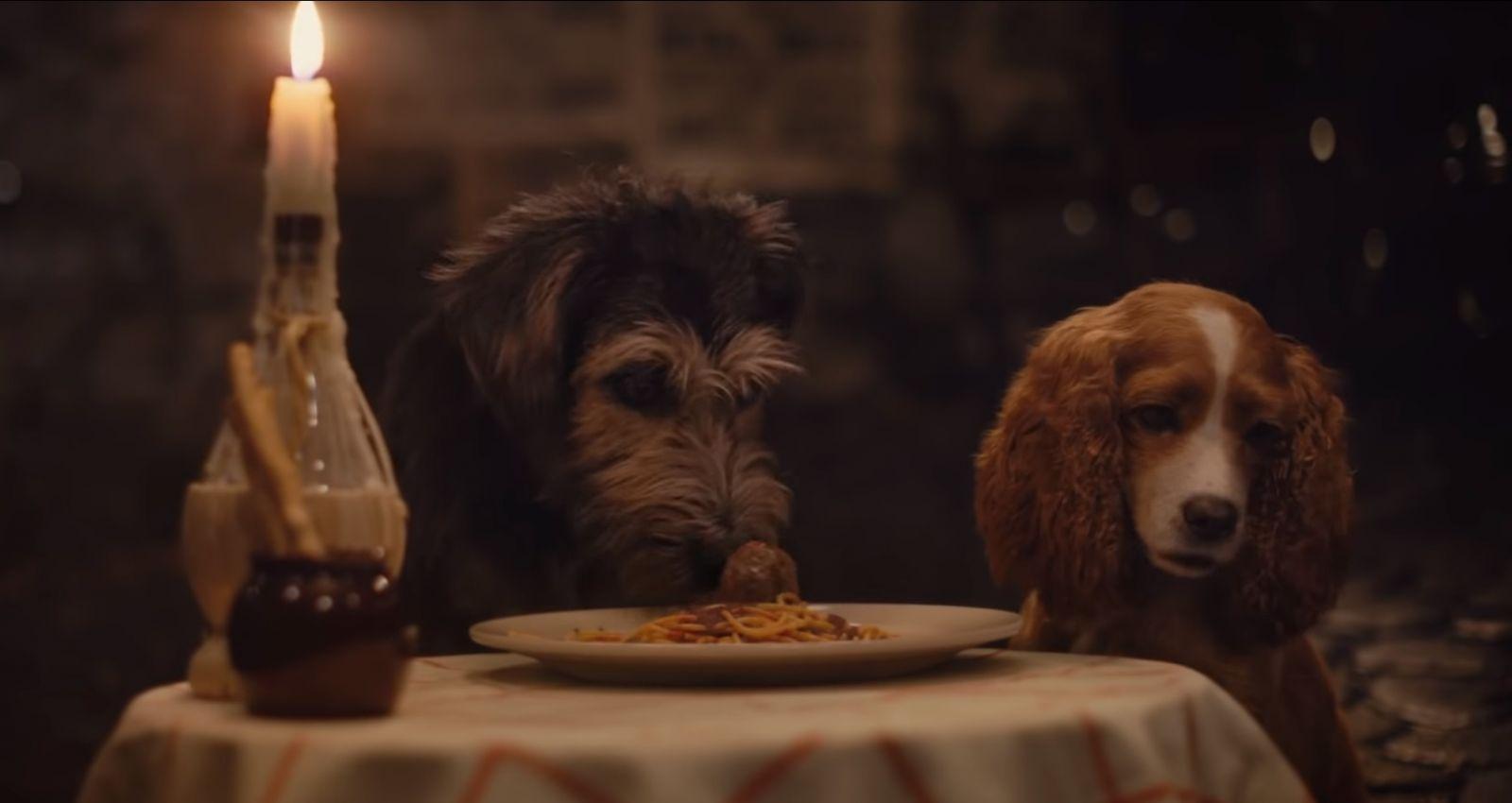 Соспагетти-поцелуем. Disney выпустила трейлер фильма Леди иБродяга