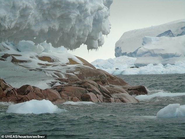 Таяние ледников открыло в Антарктиде гранитный остров размером с Виндзор...