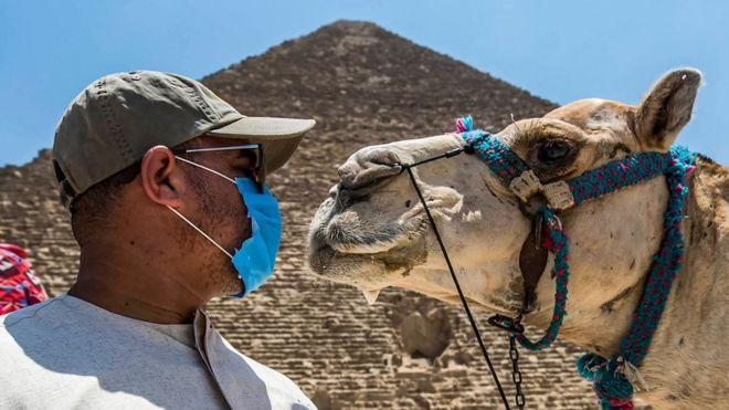 С 1 сентября Египет будет требовать от туристов тест на коронавирус