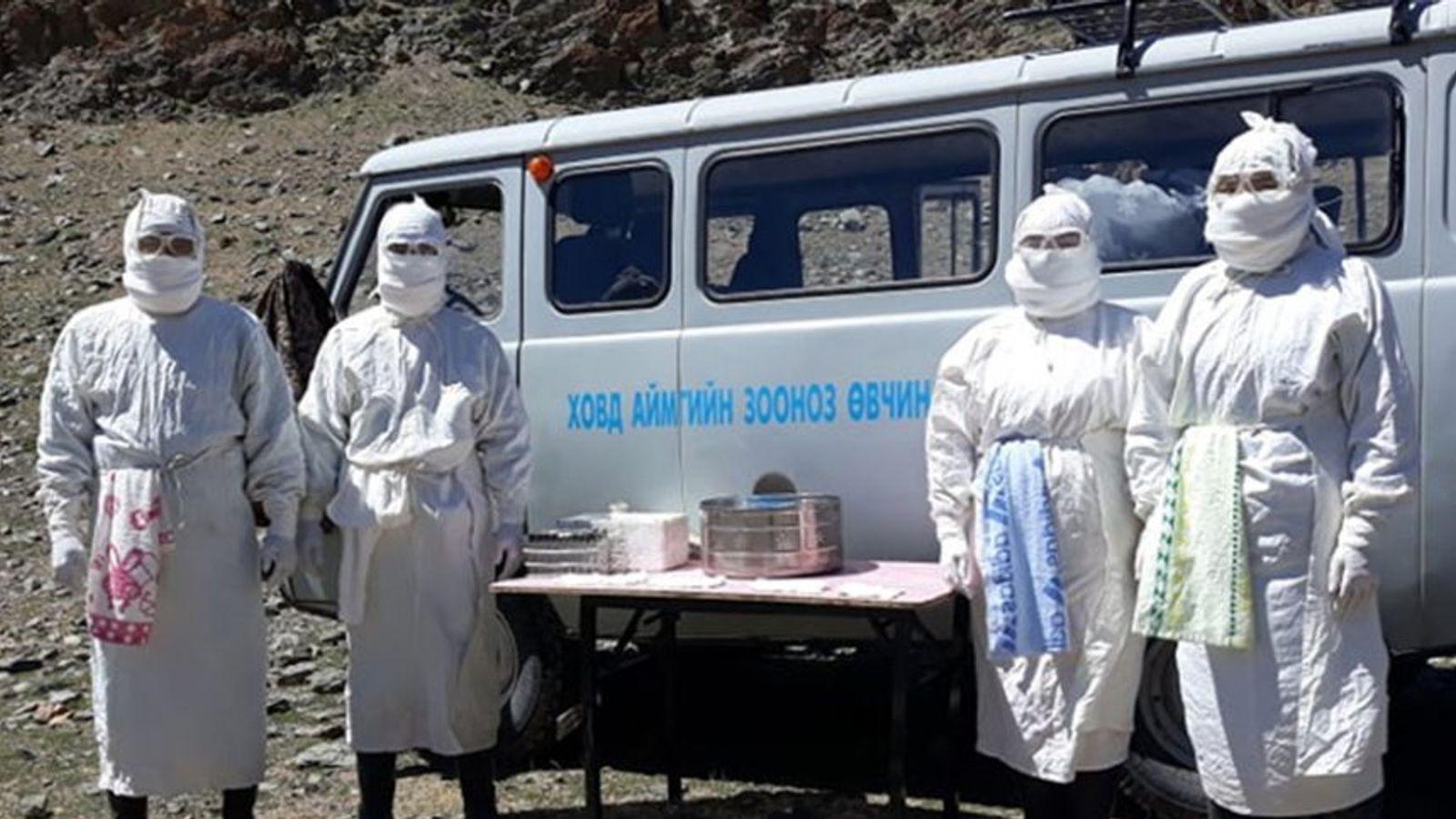 В Монголии умер подросток, заразившийся бубонной чумой