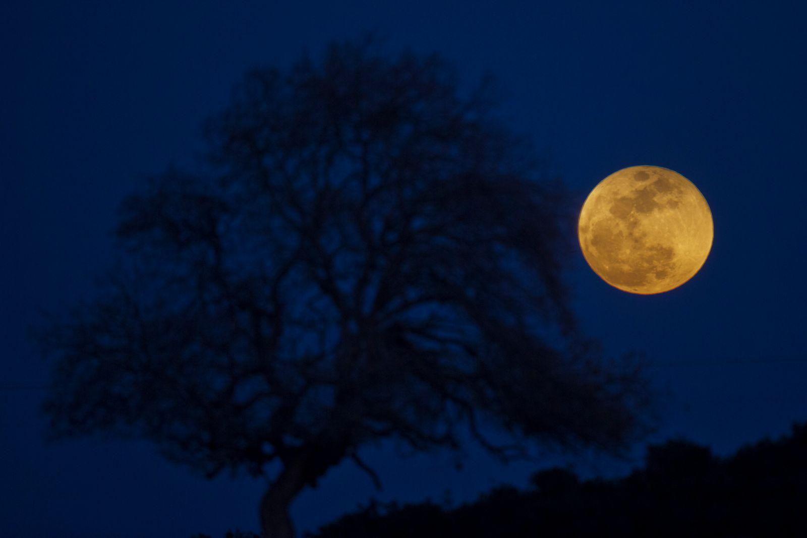 Лунное затмение состоится 5 июня, его можно будет наблюдать на всей терр...