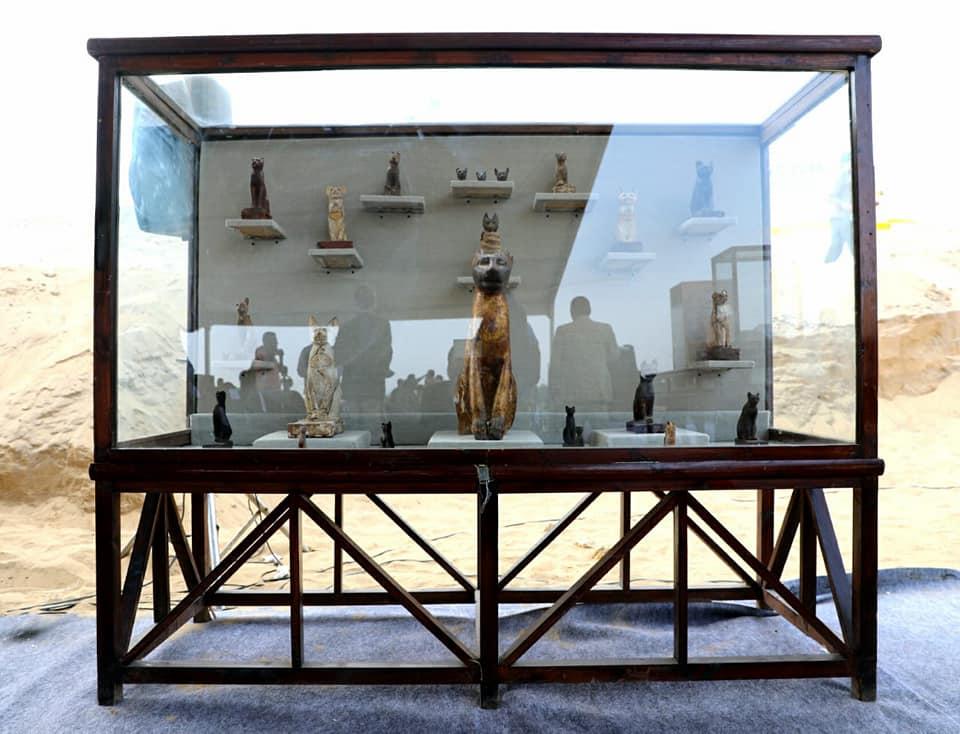 В Египте нашли гробницы с мумиями кошек