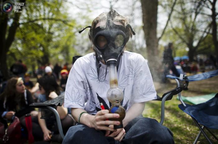 Чему вредит курение марихуана как вы коноплю из организма