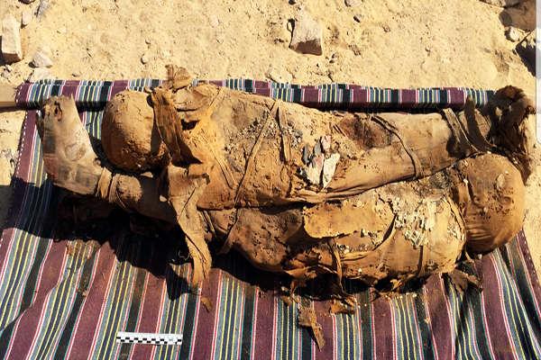 В древнеегипетской гробнице нашли более 30 мумий