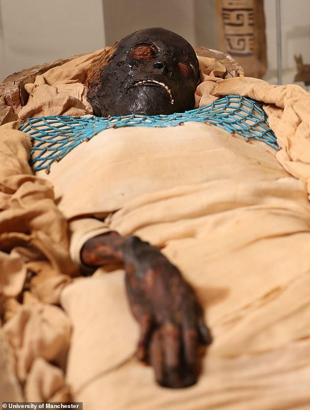 мумия такабути