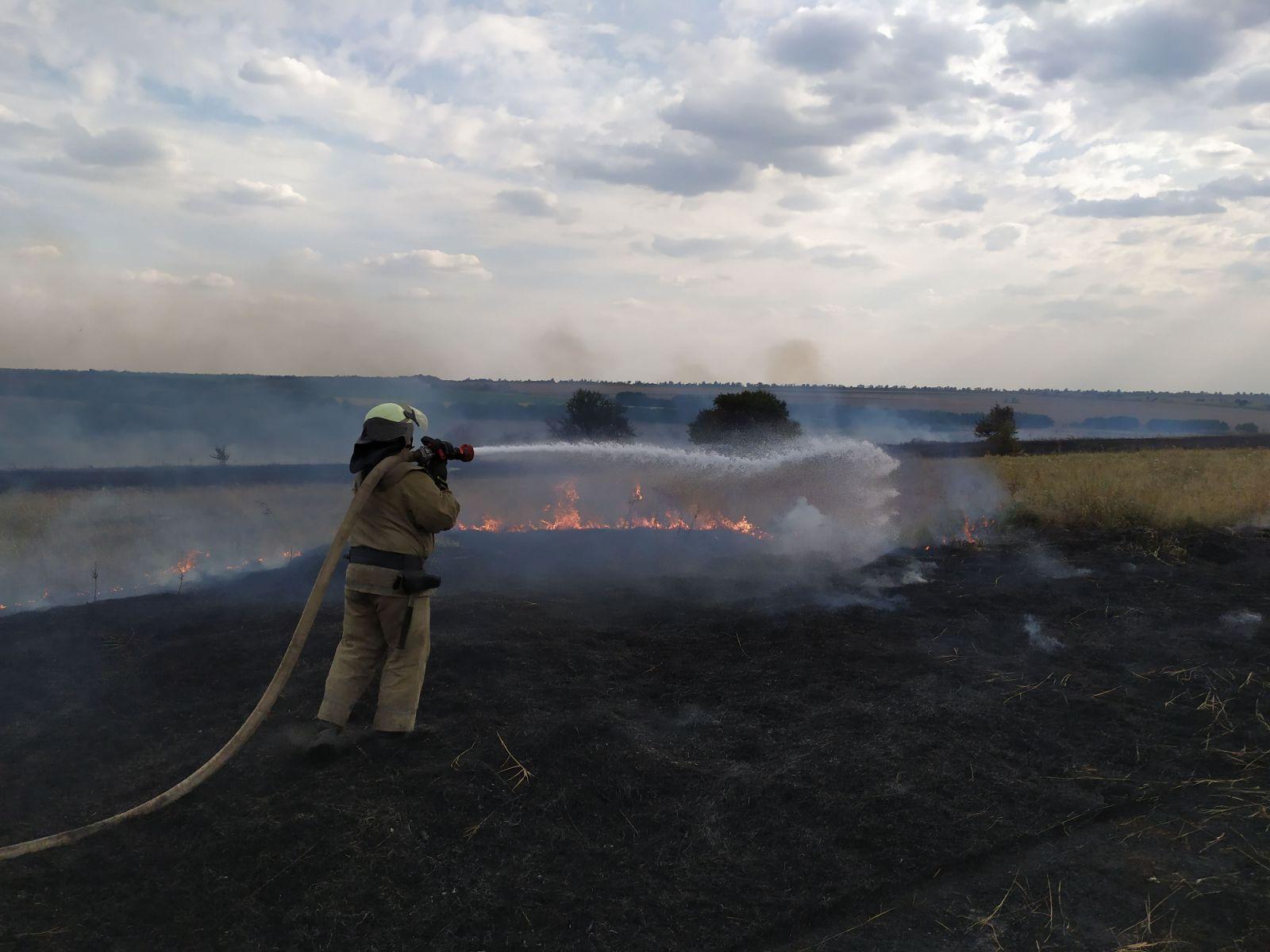 Выгорело более 20 тысяч гектар. В Луганской области локализовано пять из...