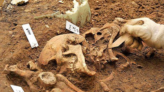Очень давнее преступление: ученые исследовали массовое захоронение женщи...