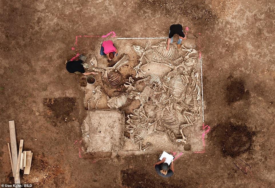 В Германии нашли гробницу вождя, похороненного с шестью женами и сокрови...