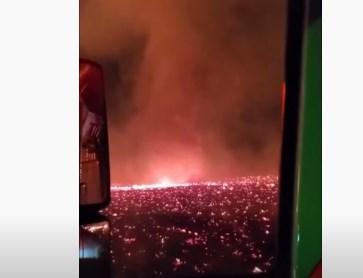 Со звуком – еще страшнее. Масштабные лесные пожары в США вызвали огненно...