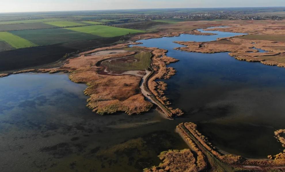 В долгу перед природой. Как Украина восстанавливает Дунайский заповедник