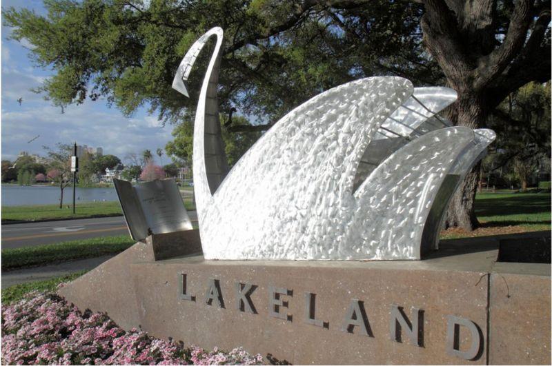 Город в США продает потомков лебедей, подаренных Елизаветой II