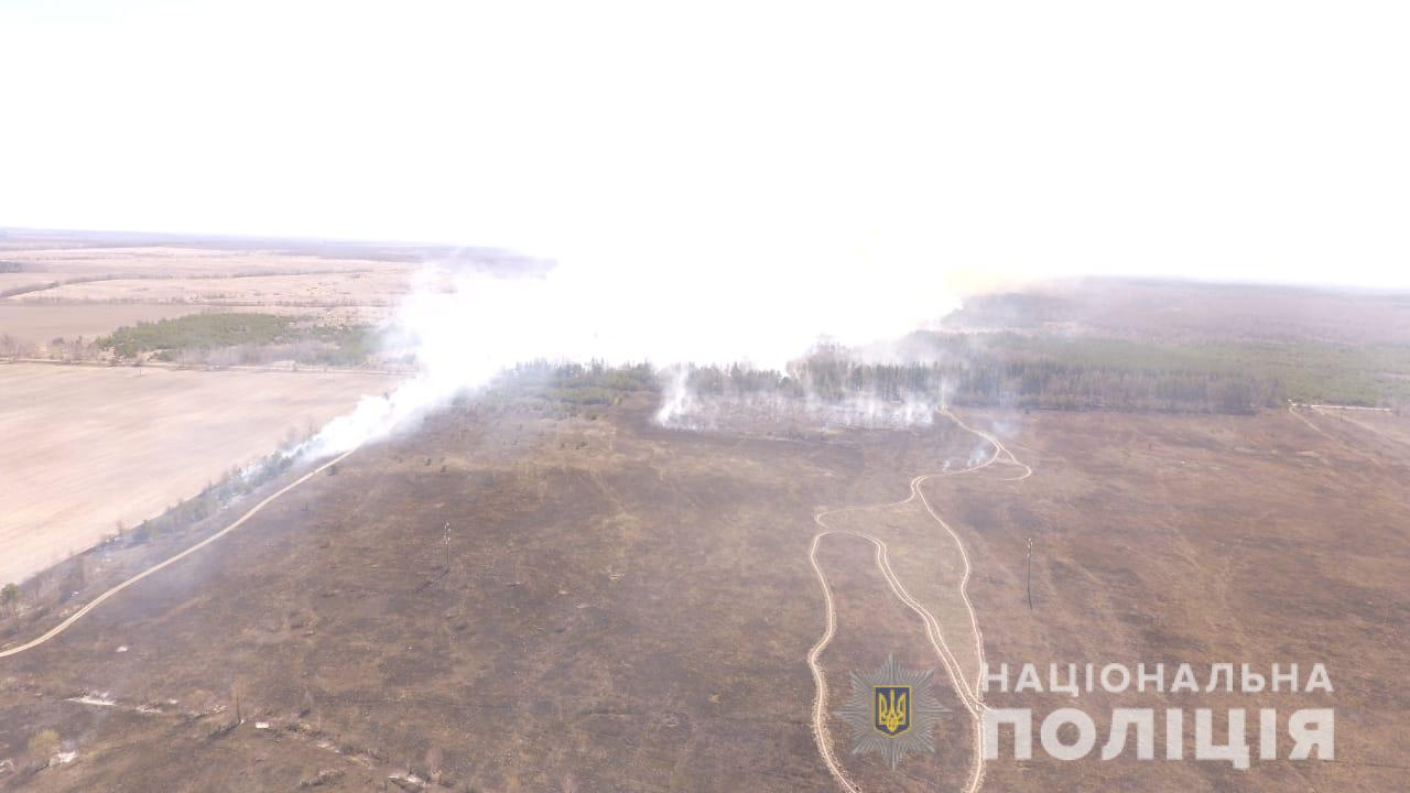Одного из поджигателей леса в Чернобыльской зоне нашли, – полиция