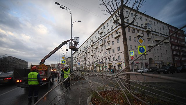 На Москву обрушился ураган: есть раненые и погибшие