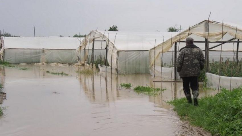 Сумма убытков от паводка на Закарпатье составляет более полмиллиарда