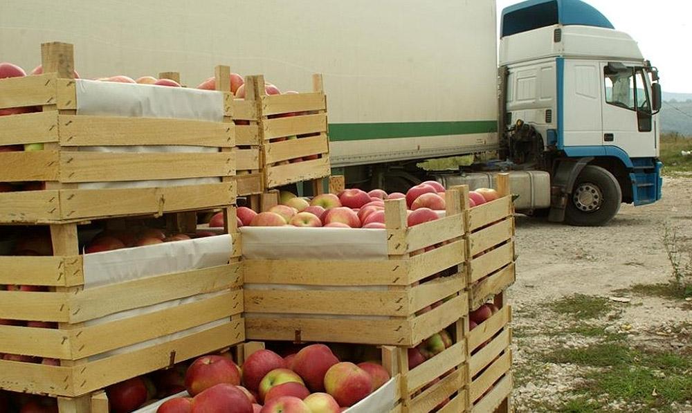 Страны ЕС отказываются от импорта украинских овощей и фруктов
