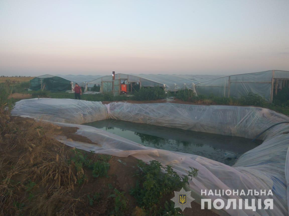 В Запорожской области полиция выявила плантацию элитной конопли на 70 мл...