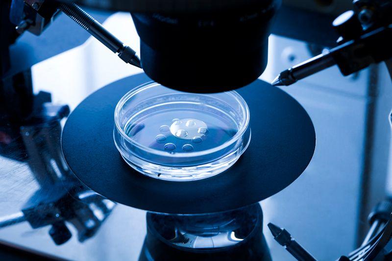 Генетики призвали к мораторию на редактирование геномов детей