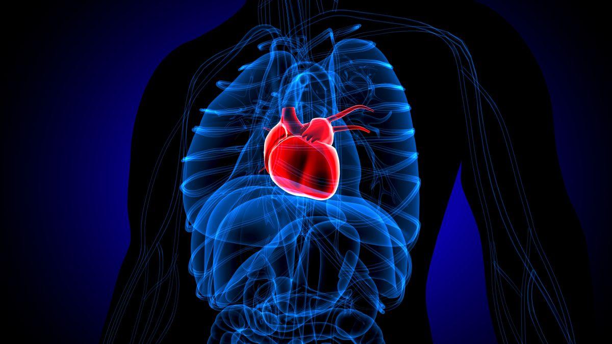 """""""Синдром разбитого сердца"""": еще одно неожиданное последствие пандемии ко..."""