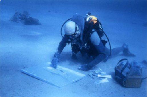 Открывается выставка подводных картин оператора команды Жака Кусто