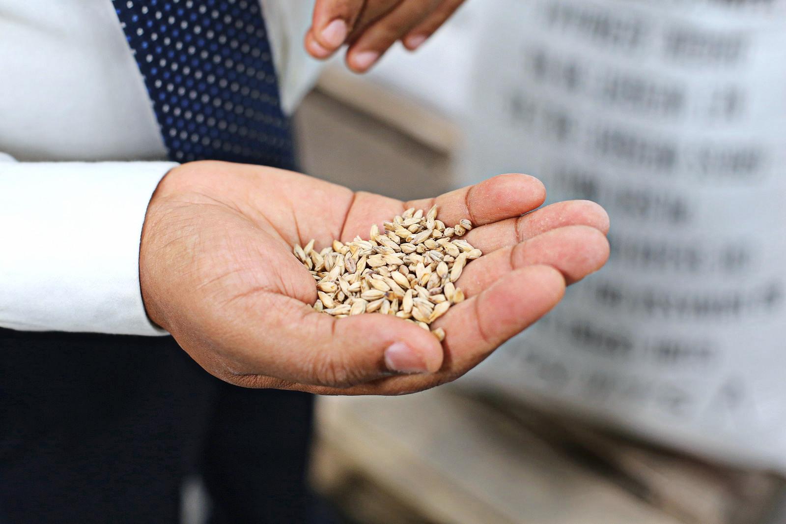 Куриные бои. Почему украинские аграрии недовольны зоной свободной торгов...