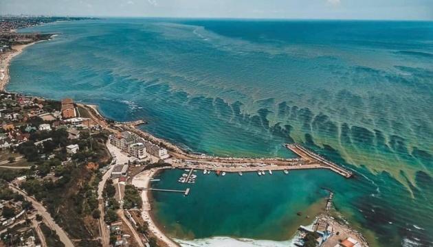 Спутники из космоса засняли, как на побережье Черного моря цветет вода