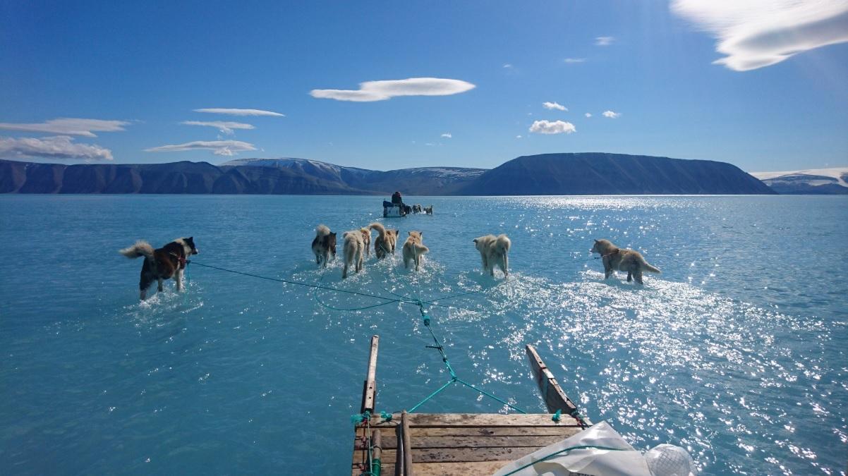 Президент США интересуется покупкой Гренландии у Дании, – СМИ