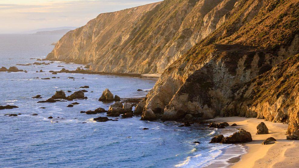 """Морские слоны """"захватили"""" калифорнийский пляж"""