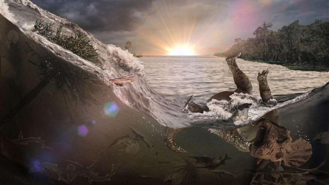 Найдены окаменелости животных, которые погибли из-за падения метеорита 6...