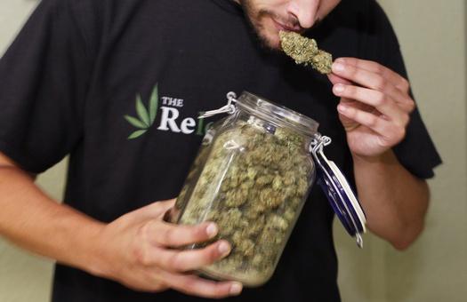 В Колорадо легализовали марихуану в профилактических целях