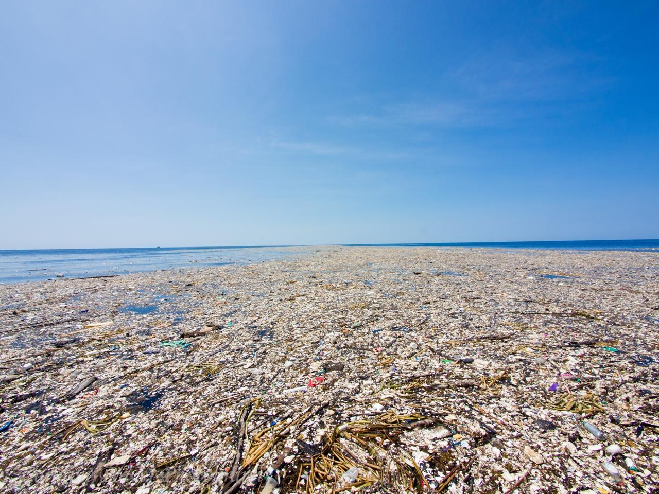 высказалась мусорный остров в тихом океане фото бесплатный
