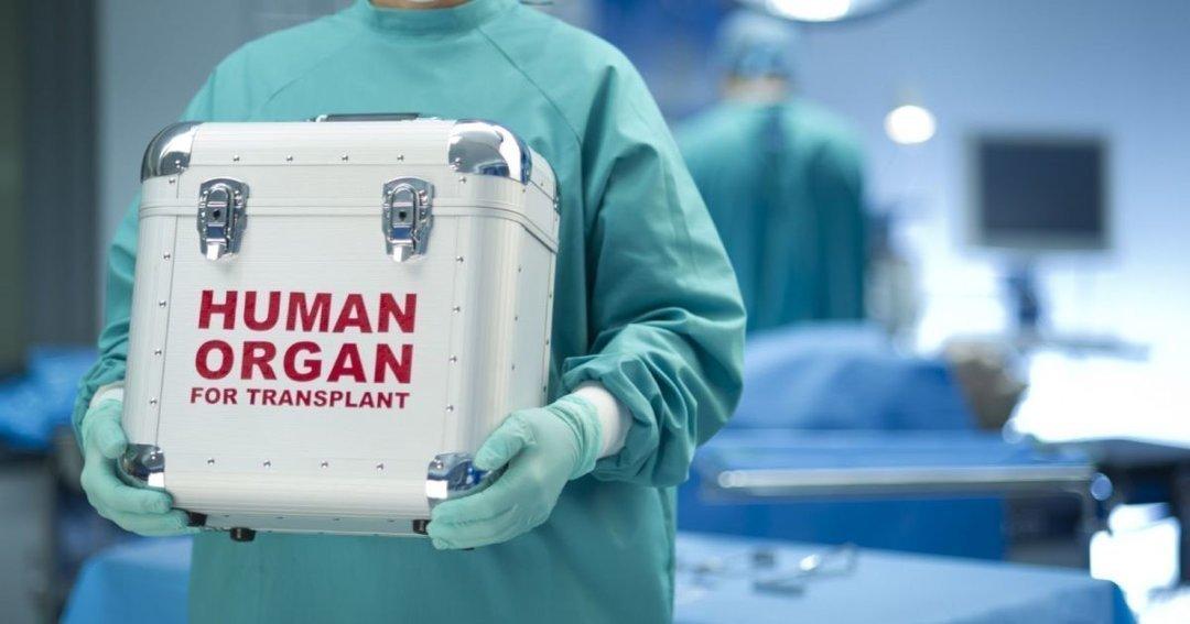 Закон о трансплантации органов до 2020 года вступил в силу