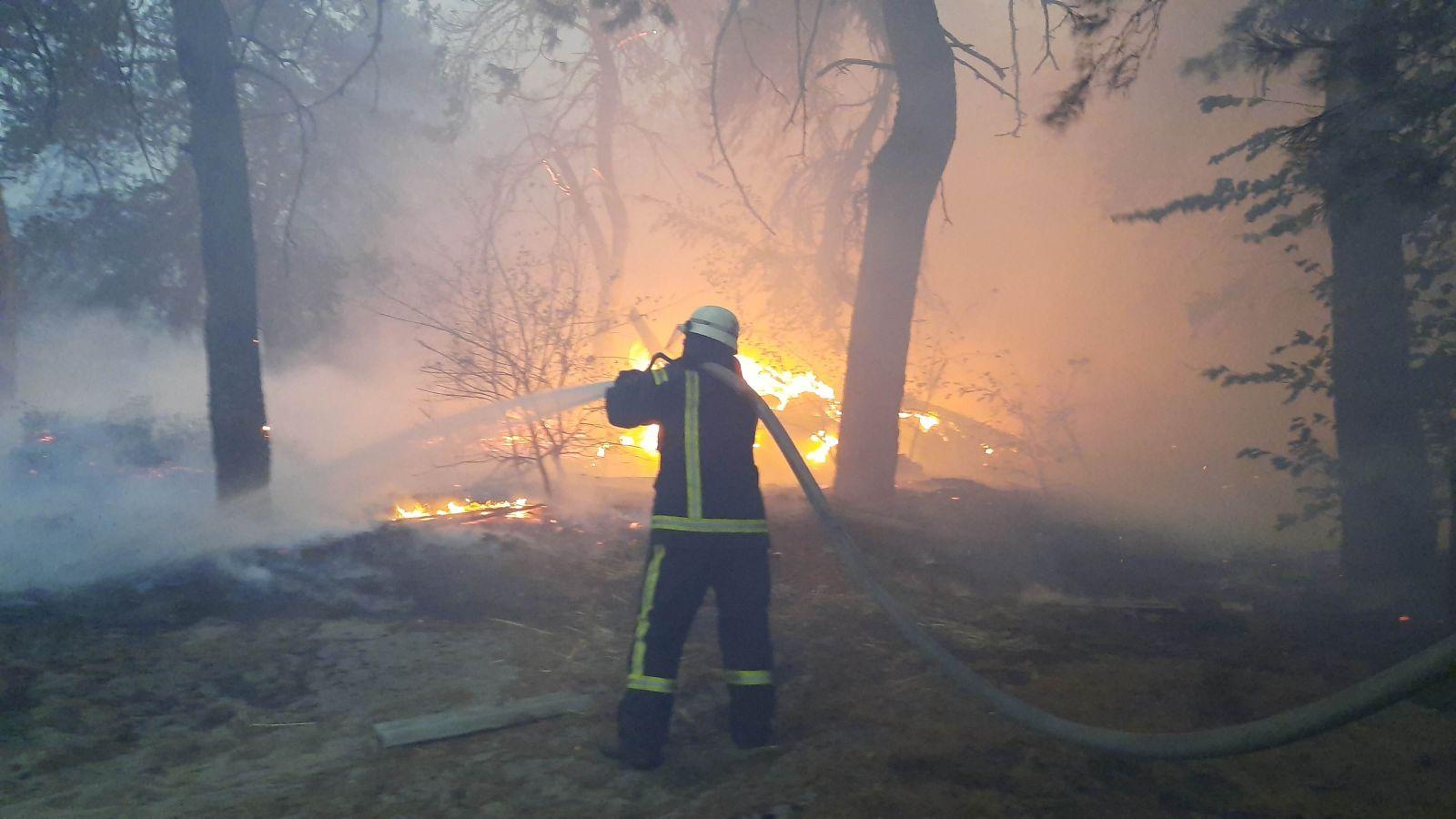 Пылающий восток. Что известно о причинах и ущербе пожаров на Луганщине