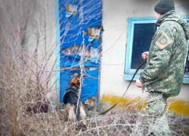 В Днепропетровской области овчарка Лаки привела полицейских к пропавшему...