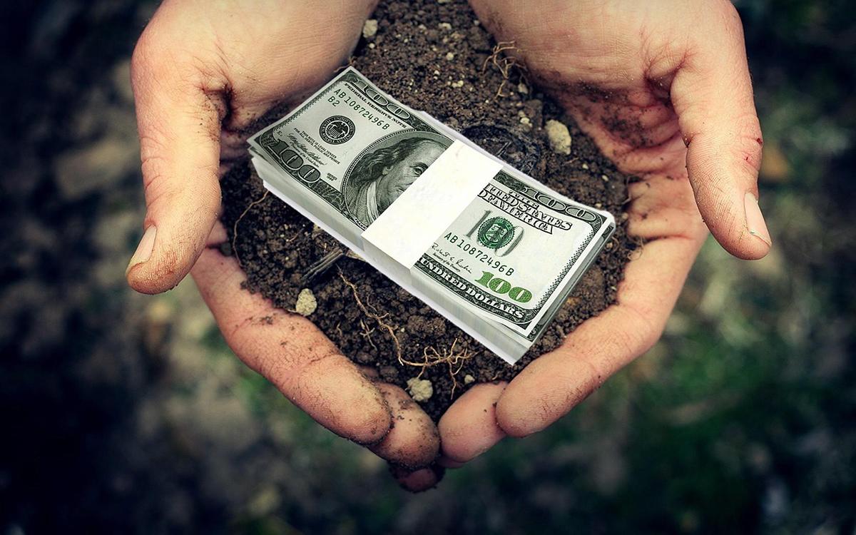 Продать все. Кабмин планирует продажу земли иностранцам, а фермеры начин...