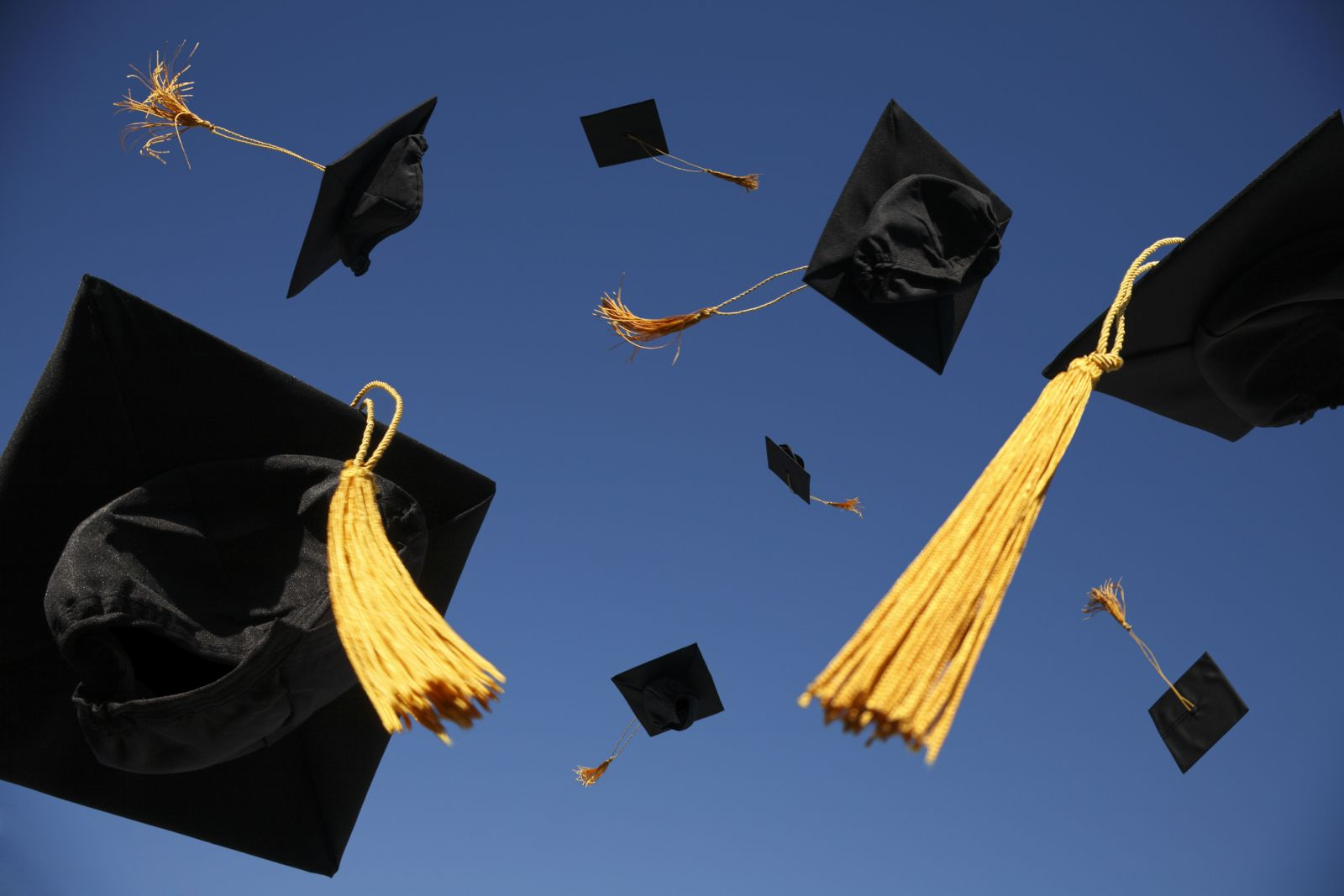 Невысшее образование. Как улучшить качество преподавания в вузах и что и...