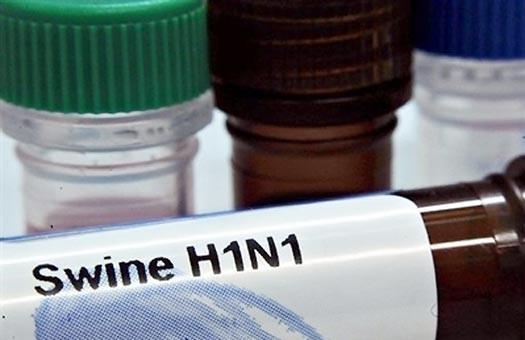 Пандемия: в  Украине выявлено 67 случаев свиного гриппа
