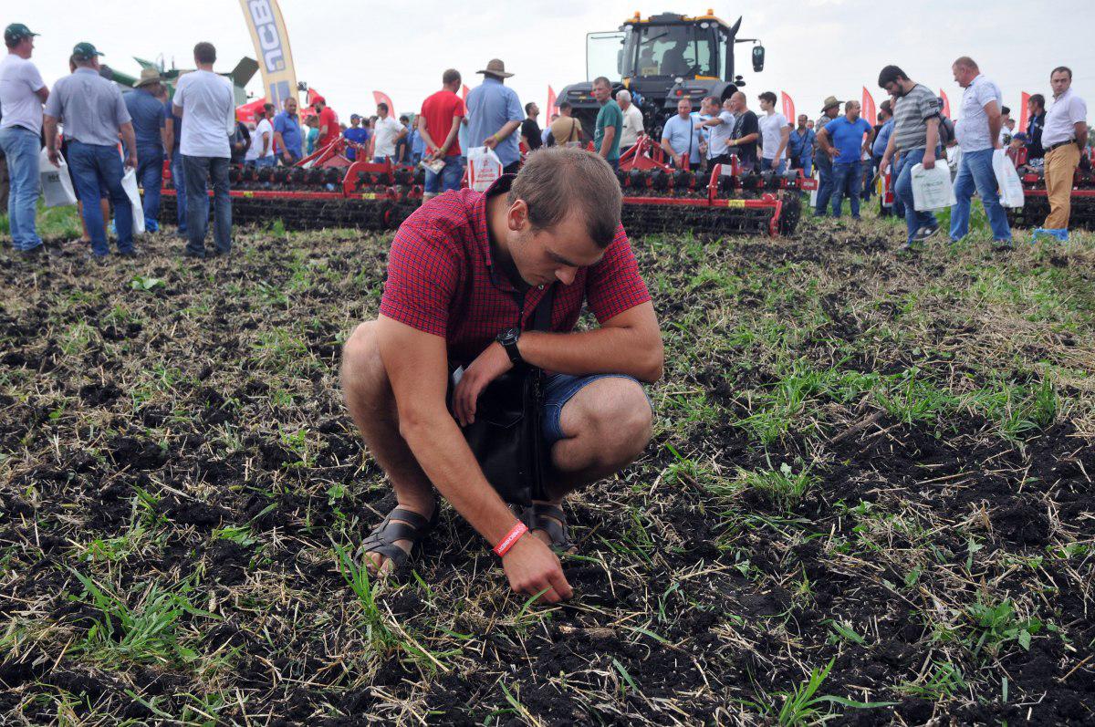Удар по экспорту. Сколько потеряют украинские аграрии от эпидемии коронавируса