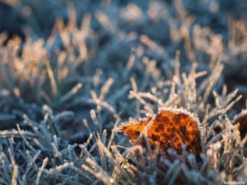 В Киев пришли первые морозы