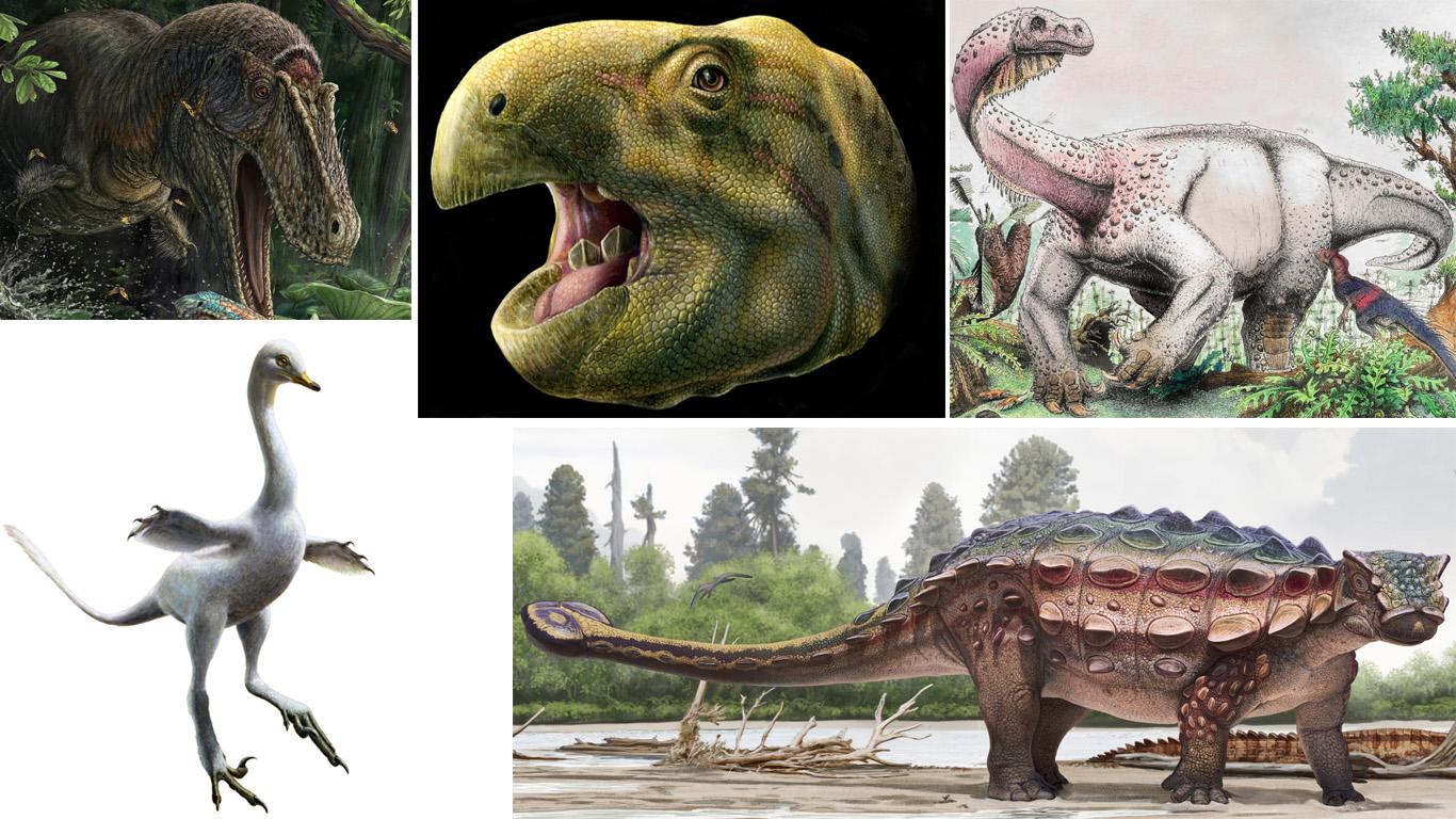 Перепись вымирания. 5 новых видов динозавров, открытых с прошлого года