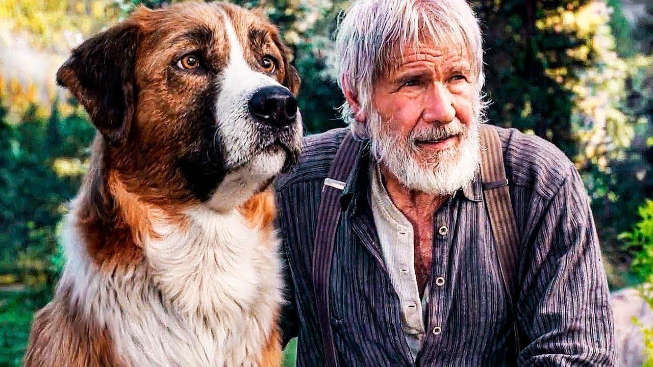 """Собачья работа  Харрисона Форда. Стоит ли смотреть фильм """"Зов предков"""""""