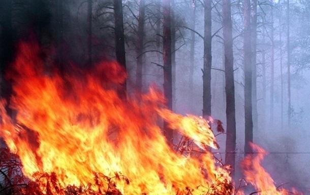 В Луганской области – новый очаг возгорания. Спасатели сдерживают пожар.