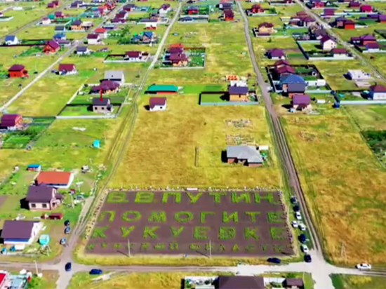 """""""Путин, помоги Кукуевке"""". Жители деревни написали картошкой в поле воззв..."""