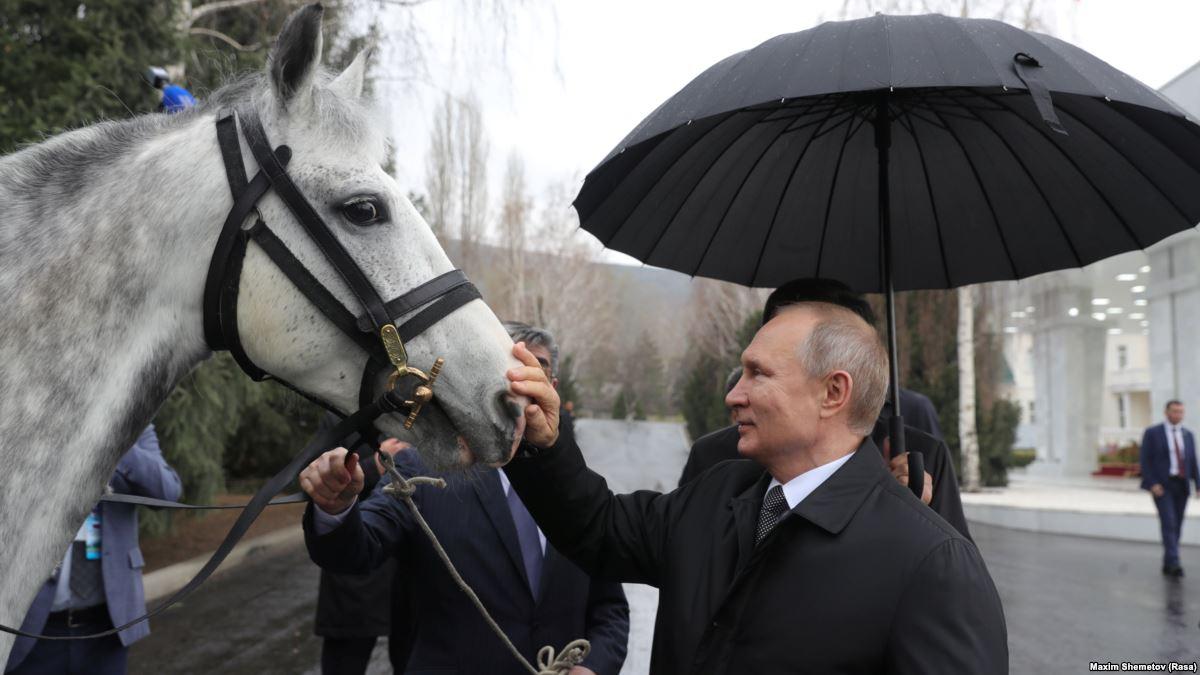 Путинский конь может стоить полмиллиона рублей