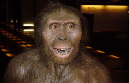 Предки человека научились ходить на 2 млн. лет раньше, чем считалось